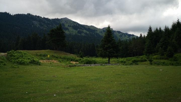 Πανεπιστημιακό Δάσος Περτούλι Τρικάλων
