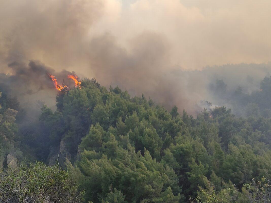 πυρκαγιά στον Σχίνο