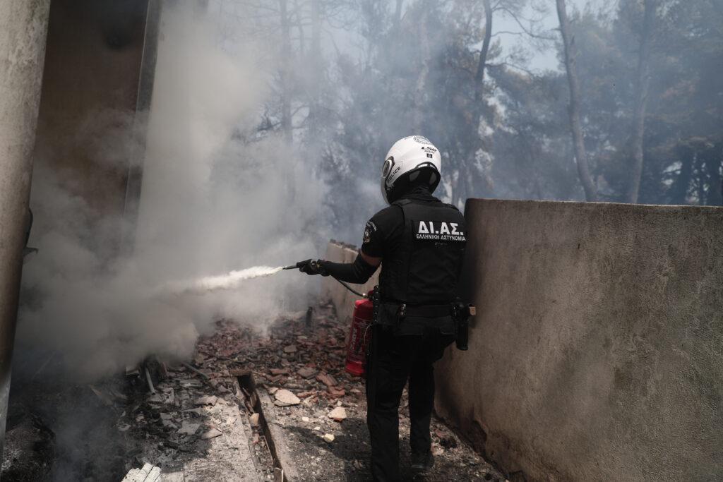 FIRE IN STAMATA, ATTICA (EUROKINISSI / VASILIS REBAPIS)