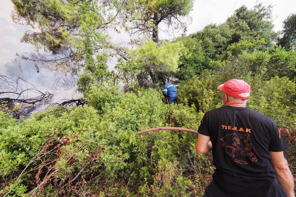 πυρκαγιά Λίμνη Ευβοίας Ροβιές
