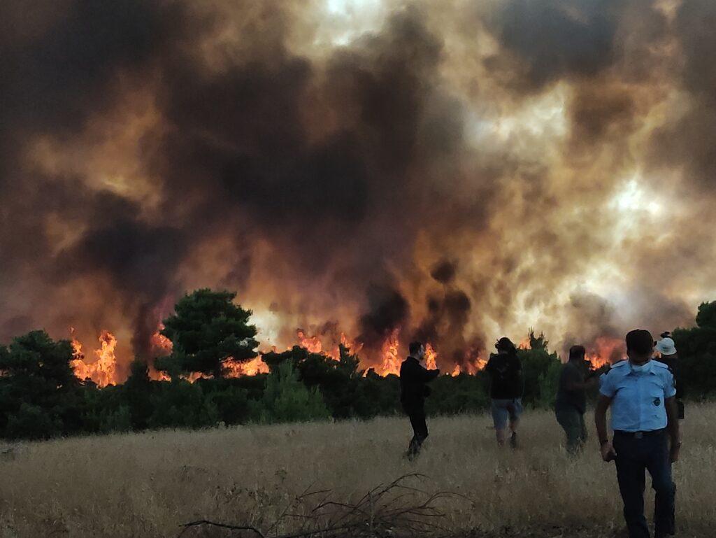 πυρκαγιά Δροσοπηγή Βαρυμπόμπη